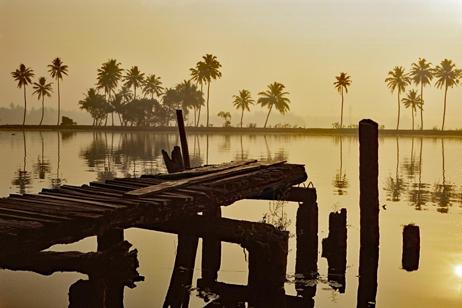Kerala backwaters at dawn