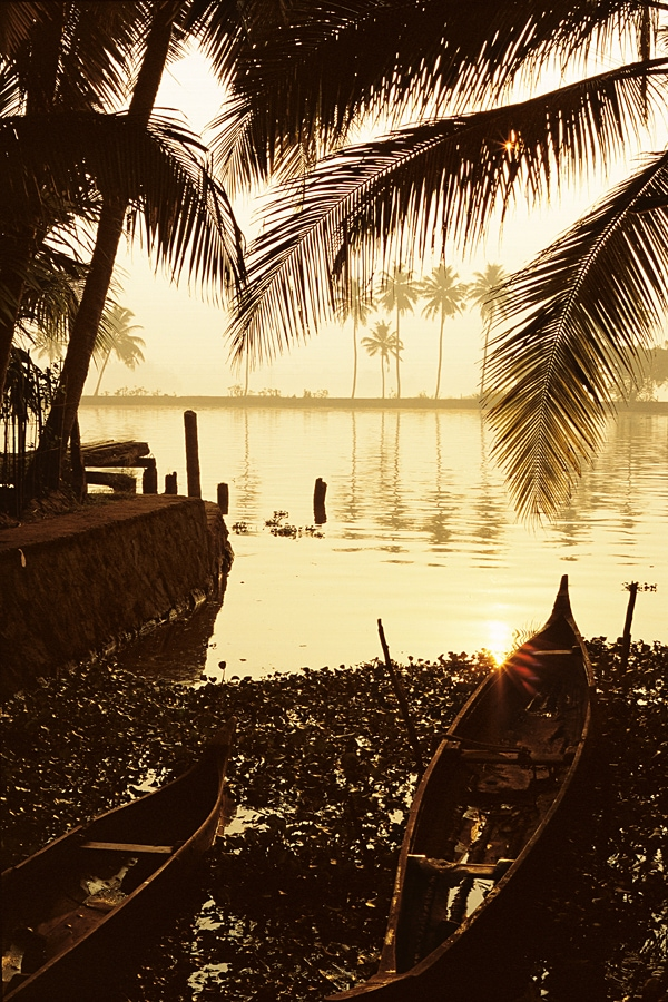 Sunrise on the banks of a river in the backwaters of Kerala in India #Kerala #India #Backwaters #sunrise