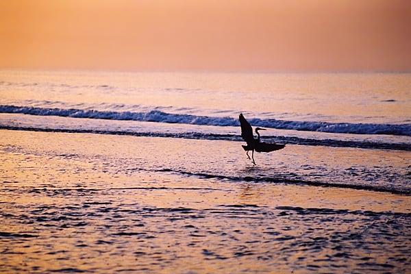 kOTU BEACH AT SUNSET