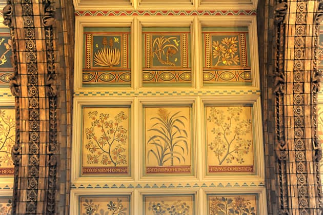 Natural History Museum, London. Ceiling Panels