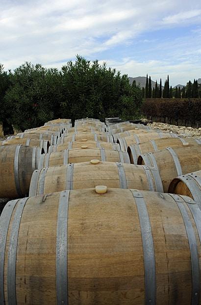 Fremnch oak barrels, Mallorcan wine
