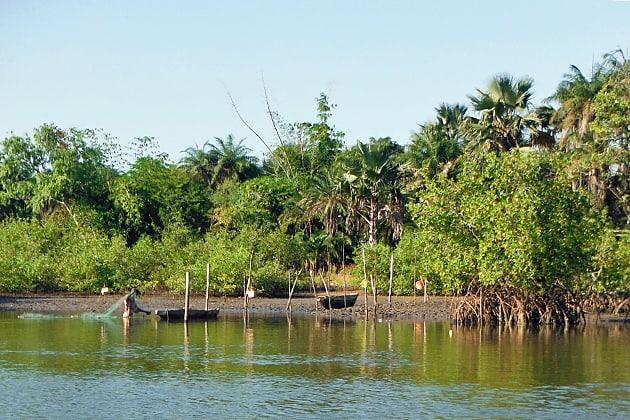Gambian Fisherman
