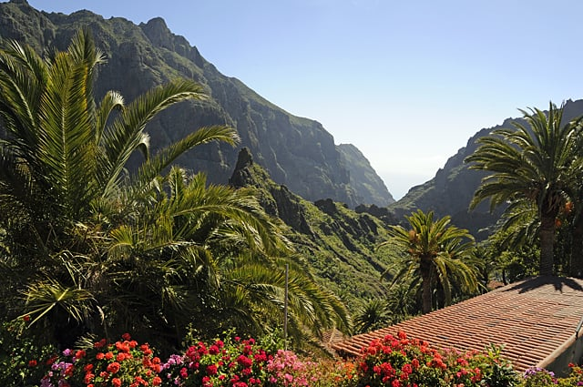 tenerife scenery