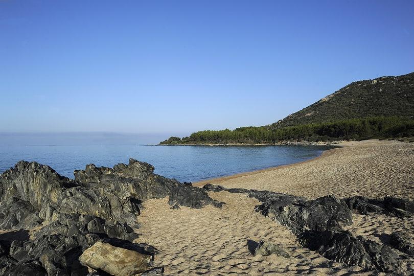 Capicciolo, Corsica