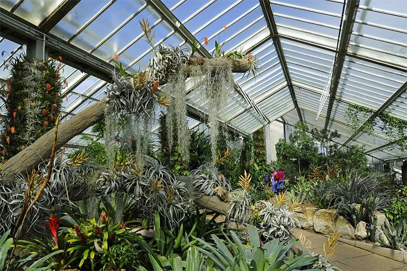 The Princess of Wales Conservatory. Kew Gardens