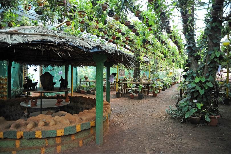 Jungle Cafe, Mollem, Goa, India