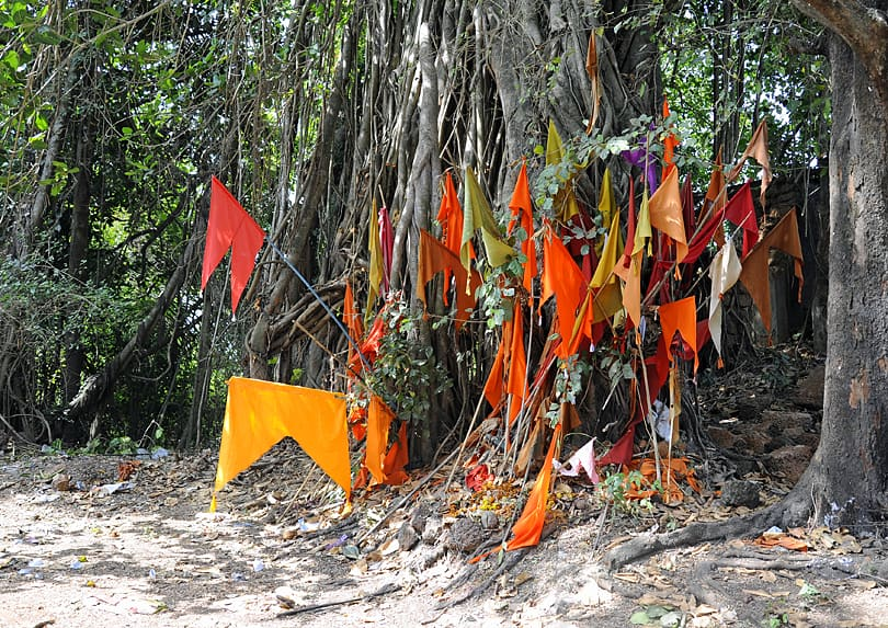 Colourful Hindu flags by the side of the road, Southern Goa
