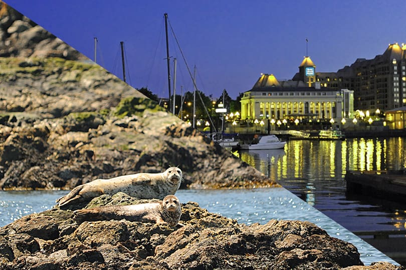 Victoria, BC, a city on the edge of nature