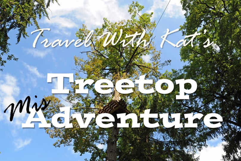 My treetop adventure or rather misadventure!