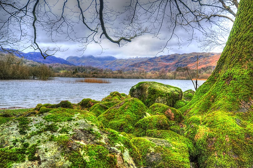Walking by Elterwater Lake, The Lake District, Cumbria, England