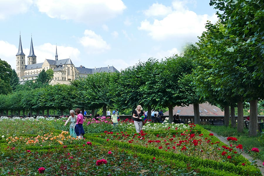 Bamberg's Rose Garden, Germany