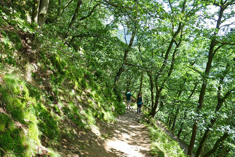 The walk through the woods from the top of the chairlift to Viaden Castle