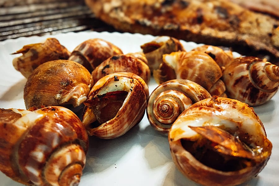 Roasted snails at Chiang Mai Gate street food market