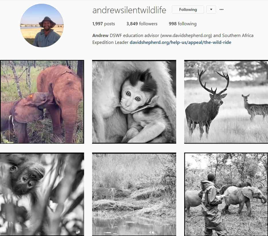 Top Wildlife Instagram Accounts to follow in 2018