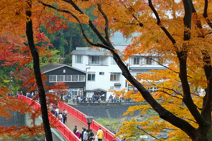 Instagramming Japan - Autumn in Shoryudo