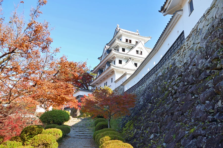 Gujo-Hachiman Castle - the white castle surrounded by autumn reds of the maple trees looks glorious against a backdrop of a clear blue sky