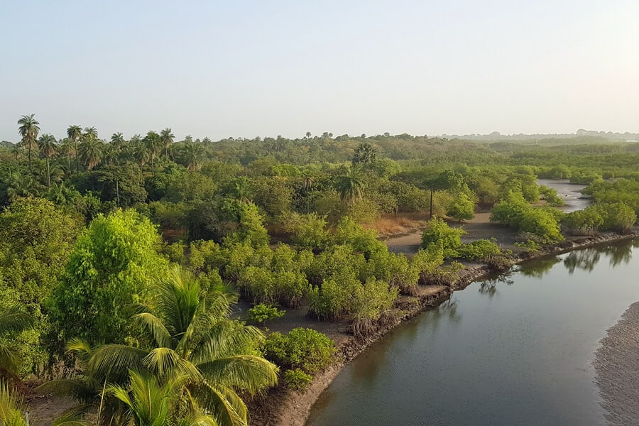 Makasutu Forest, The Gambia, West Africa
