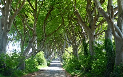The ultimate guide to Game of Thrones' filming locations in Northern Ireland