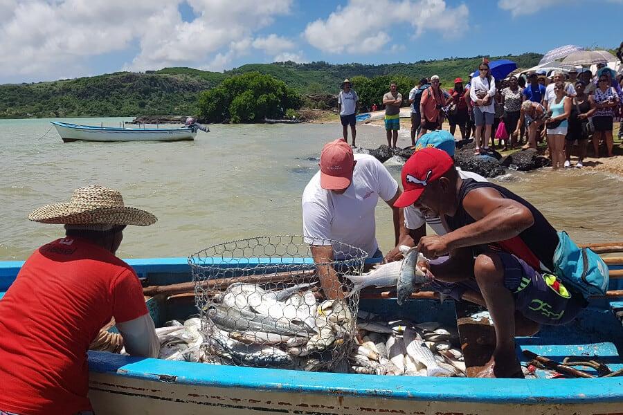 La Fête du Poisson, Rodrigues Island