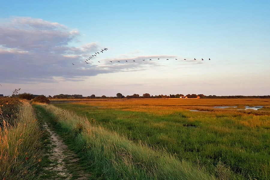 Pagham harbour, West Susses, England