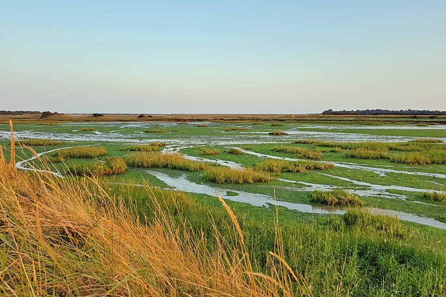 Pagham Harbour, West Sussex, England