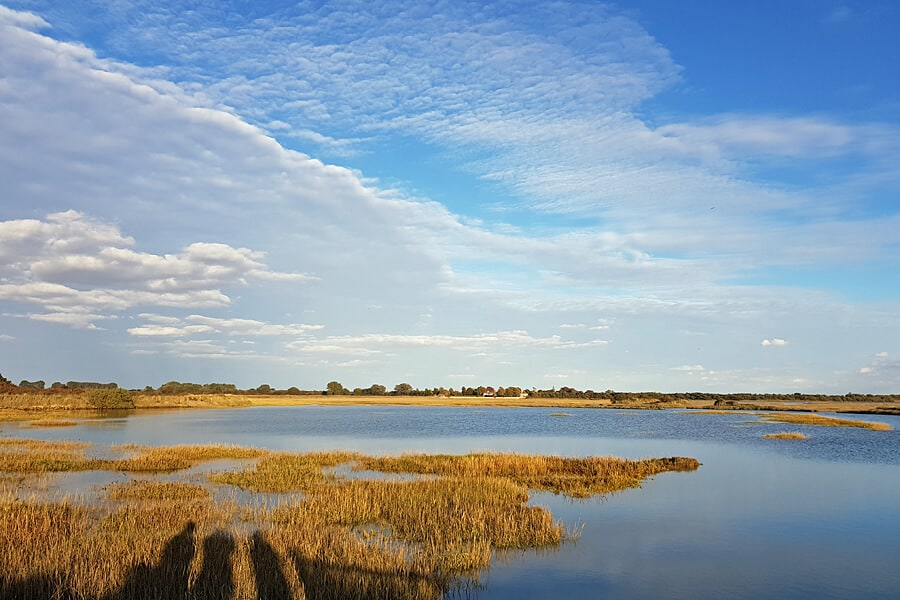 Pagham Harbour, West Sussex, England, UK