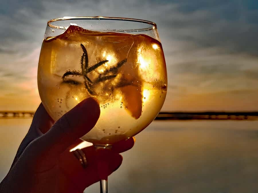 Porto Tónico | How to make the perfect P&T, white port cocktail