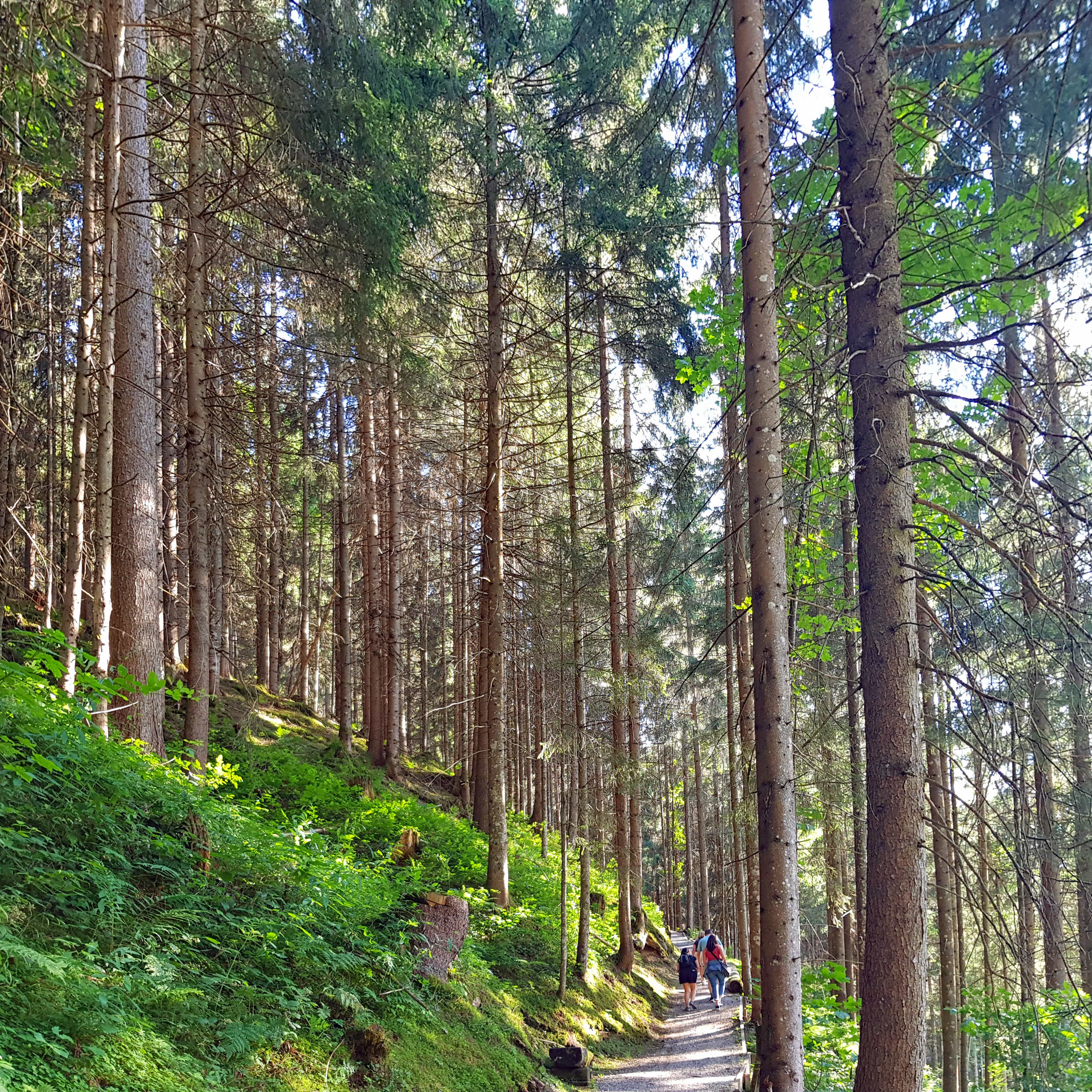 Summer in Alpbach, the prettiest village in Austria - Travel
