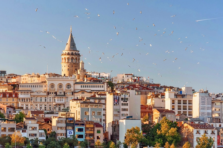 A view of the city of Istanbul with a flock of birds flying overhead