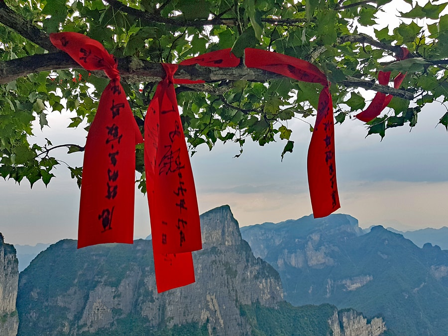 Wishes written on red ribbons tied to a tree on Tianmen Mountain in China