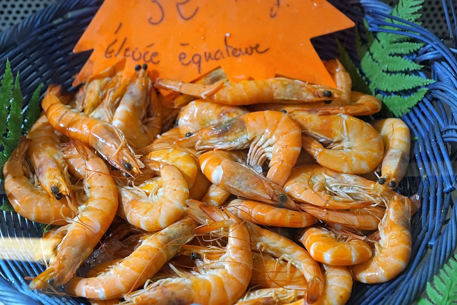 Fresh prawns, one of the many different seafoods common in Croatian cuisine