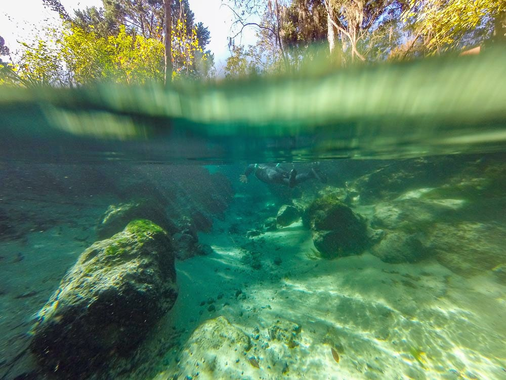 Underwater shot of the clear of Three Sisters Springs with a wetsuite clad swimmer in the distance